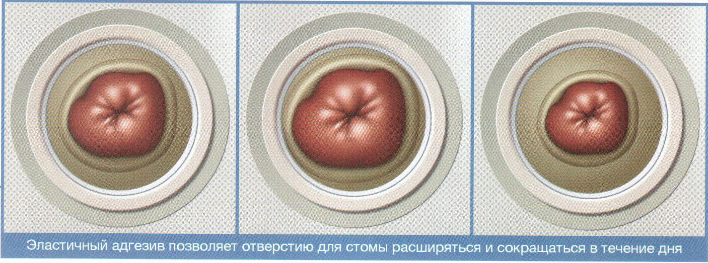 plastichnaya plastina