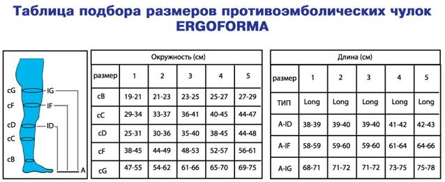 ergoforma_razm.jpg
