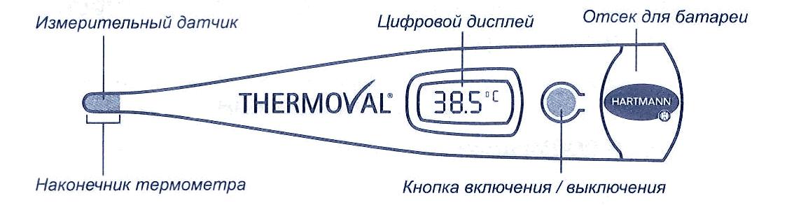 http://www.mystoma.ru/published/publicdata/WWWMYSTOMAORGWEBASYST/attachments/SC/images/00000.jpg